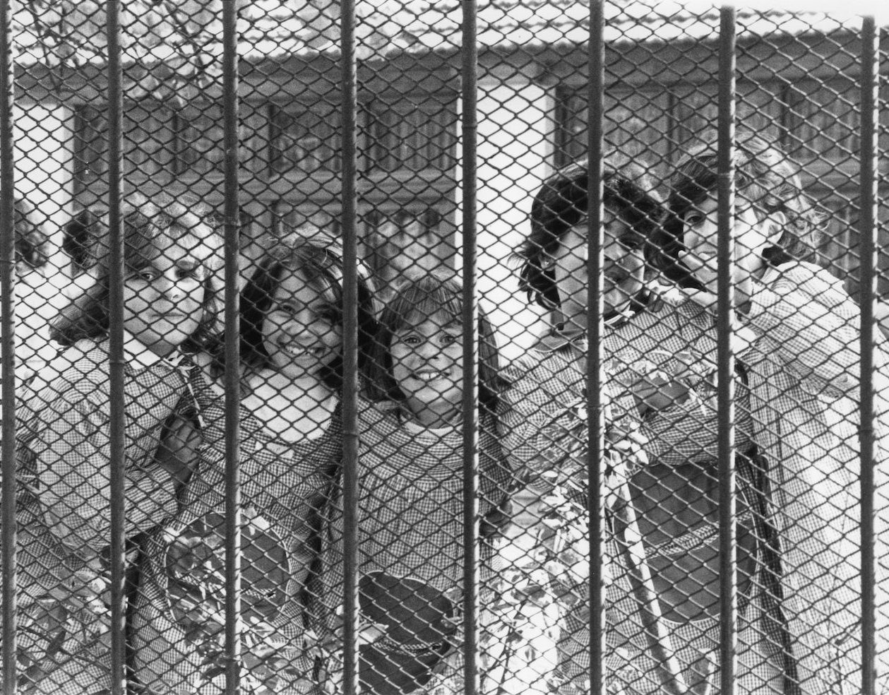 <center>PORTUGAL FENCE GIRLS</center>