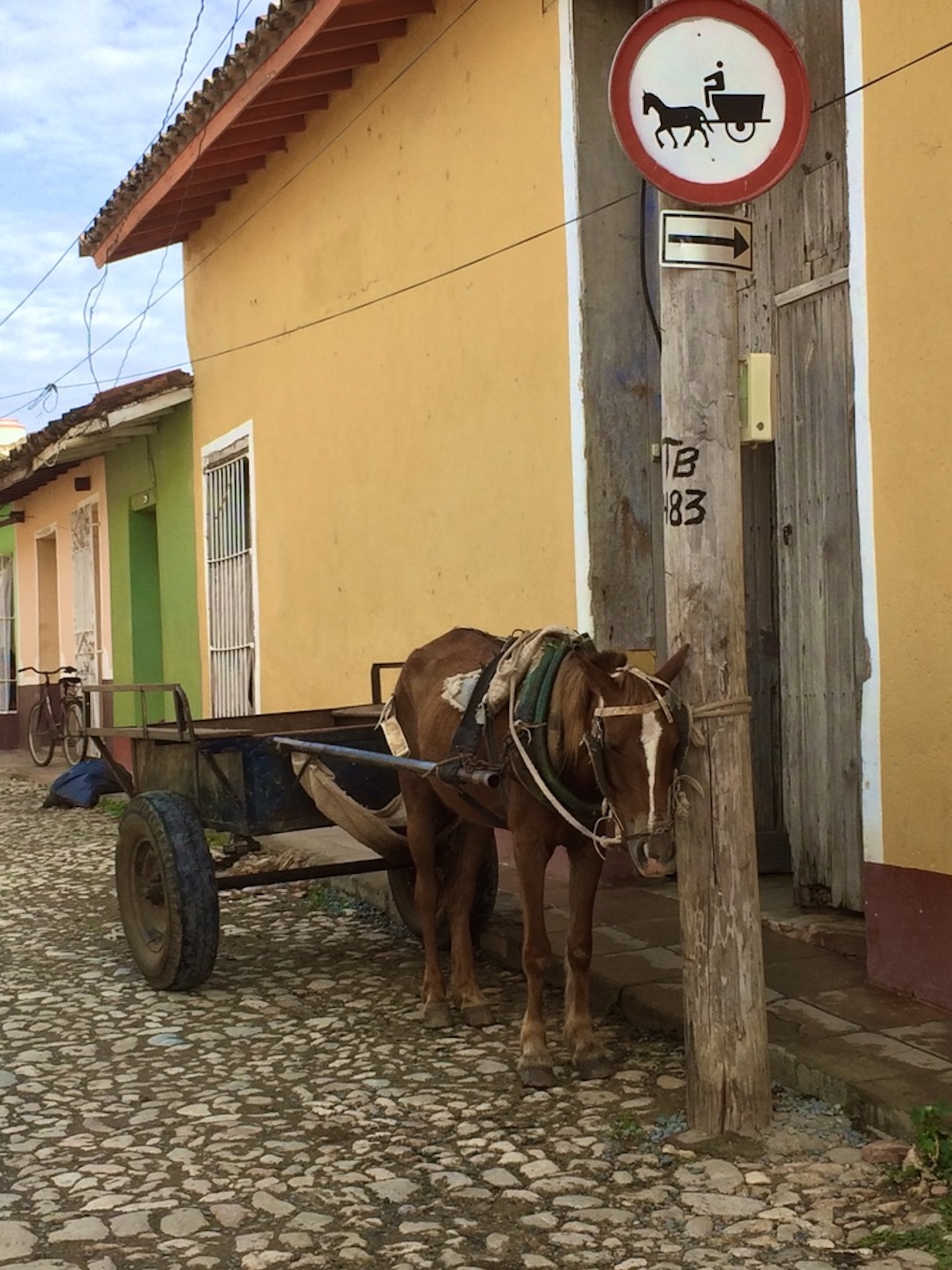 <center>MULE AND CART</center>