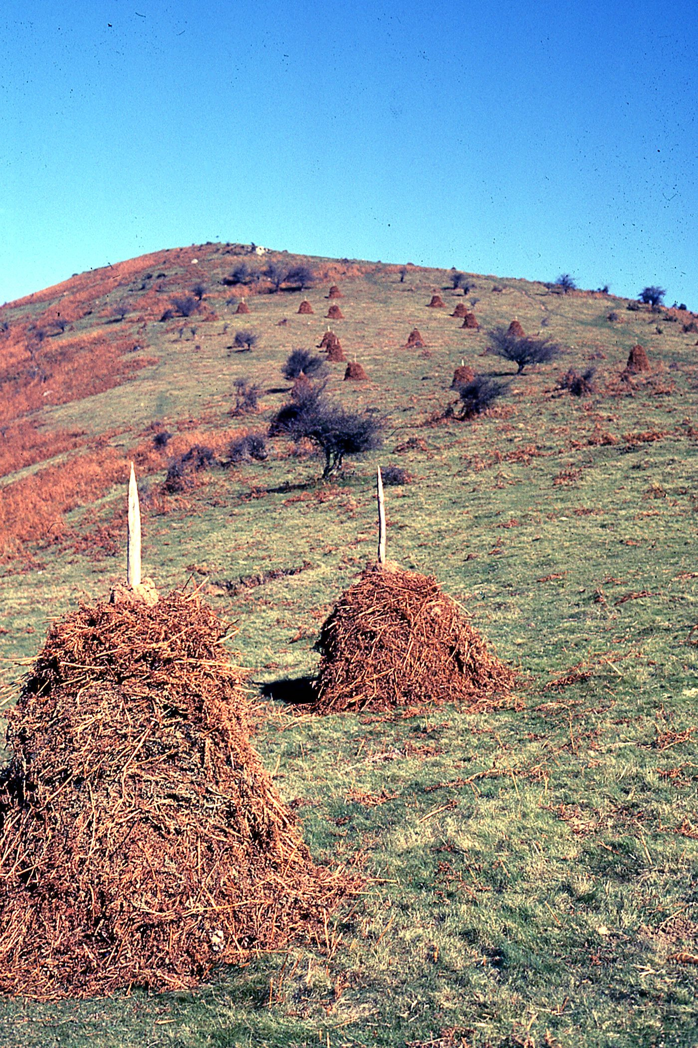 <center>BASQUE COUNTRY, SPAIN - HAYSTACKS</center>